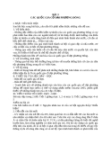 Giáo án Lịch sử 10 bài 3: Các quốc gia cổ đại phương Đông