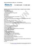 Chuyên đề ôn thi Đại học môn Anh: Câu mệnh lệnh - Câu điều kiện (Cô Vũ Thu Phương)