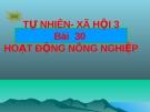 Slide bài Hoạt động nông nghiệp - Tự Nhiên Xã Hội 3 - GV.H.T.Minh