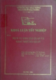Khóa luận tốt nghiệp: Dịch vụ khai hải quan và khai thuê hải quan