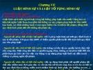 Bài giảng Pháp luật đại cương (TS. Lê Minh Toàn) - Chương 7: Luật hình sự và luật tố tụng dân sự