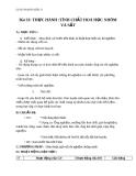 Giáo án bài 23: Thực hành tính chất hóa học của Nhôm và sắt - Hóa 9 - GV.N Phương