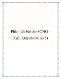Bài văn mẫu lớp 9: Phân tích bài thơ Sóng Xuân Quỳnh (bài số 5)