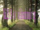 Bài giảng Công nghệ 7 bài 29: Bảo vệ và khoanh nuôi rừng