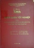 Khóa luận tốt nghiệp: Kinh doanh hàng miễn thuế tại các cảng hàng không của Việt Nam - thực trạng và giải pháp