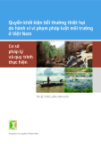 Quyền khởi kiện bồi thường thiệt hại do hành vi vi phạm pháp luật môi trường ở Việt Nam