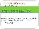 Báo cáo tiểu luận Anhydric Maleic