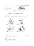 Đề thi HSG môn Sinh lớp 12  năm 2008 - Sở GD&ĐT Phú Yên