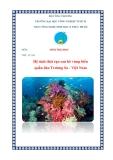Tiểu luận sinh thái học: Hệ sinh thái rạn san hô vùng biển quần đảo Trường Sa Việt Nam