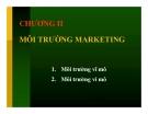 Bài giảng Marketing căn bản - Chương 2 Môi trường marketing