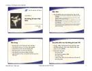 Bài giảng Nguyên lý kế toán (GV. Vũ Hữu Đức) - Chương 9: Hệ thống kế toán Việt Nam