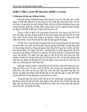 Báo cáo thực tập Nhà máy đường Cà Mau