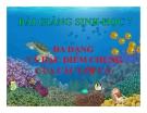 Bài giảng Sinh học 7 bài 34: Đa dạng và đặc điểm chung của các lớp cá