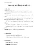 Giáo án Hóa học 11 bài 20: Mở đầu về hóa hữu cơ
