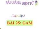 Bài giảng Gam - Toán 3 - GV.Ng.P.Hùng