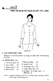 Thiết kế sơ mi nữ dáng bó sát tay lửng