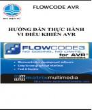 Hướng dẫn thực hành vi điều khiển AVR