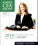 CFA Level 1 Schweser Notes 2014 - Book 5