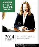 CFA Level 1 Schweser Notes 2014 - Book 3