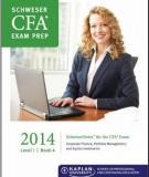 CFA Level 1 Schweser Notes 2014 - Book 4