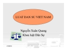 Bài giảng Luật dân sự Việt Nam (Nguyễn Xuân Quang)