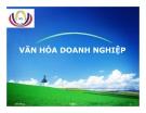 Bài giảng Văn hóa doanh nghiệp (Nguyễn Quang Chương)