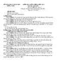 Đề KTCL HK1 Lý 10 - THPT Thanh Bình 2 2012-2013 (kèm đáp án)