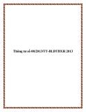 Thông tư số 08/2013/TT-BLĐTBXH 2013
