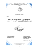 Luận văn tốt nghiệp: Phân tích tình hình tài chính tại công ty cổ phần cơ khí ô tô Cần Thơ.