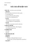 Giáo án Sinh học 8 bài 28: Tiêu hóa ở ruột non