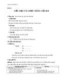 Giáo án Sinh học 8 bài 41: Cấu tạo và chức năng của da