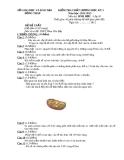 Đề KTCL HK1 Sinh Học 10 - THPT Phan Văn Bảy 2012-2013 (kèm đáp án)