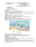 Đề KTCL HK1 Sinh Học 10 - THPT Lai Vung 1 (2012-2013) - Kèm đáp án
