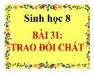Bài giảng Sinh học 8 bài 31: Trao đổi chất