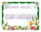 Bài giảng Sinh học 8 bài 34: Vitamin và muối khoáng