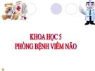 Bài 14: Phòng bệnh viêm não - Bài giảng điện tử Khoa học 5 - L.K.Chi