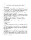 Giáo án Lịch sử 6 bài 27:  Ngô Quyền và chiến thắng Bạch Đằng năm 938