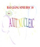 Bài giảng Sinh học 10 bài 6: Axit nuclêic