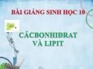Bài giảng Sinh học 10 bài 4: Cacbonhiđrat va lipit