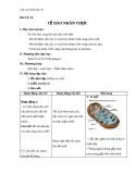 Giáo án Sinh học 10 bài 9: Tế bào nhân thực (tiếp theo)