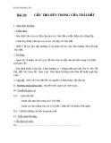 Giáo án Địa lý 6 bài 10: Cấu tạo bên trong của Trái Đất
