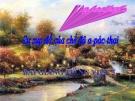 Bài giảng Tập đọc: Sự sụp đổ của chế độ a-pác-thai - Tiếng việt 5 - GV.N.T.Hồng