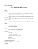 Giáo án Công nghệ 7 bài 16: Gieo trồng cây nông  nghiệp
