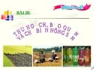 Bài giảng Công nghệ 7 bài 20: Thu hoạch bảo quản và chế biến nông sản