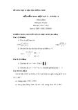 Đề kiểm tra HK2 Toán 11 - THPT Châu Thành 1 (2012-2013) - Kèm đáp án