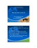 Bài giảng Đầu tư quốc tế: Chương 7 - GV.Nguyễn Thị Việt Hoa