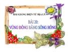 Bài giảng Địa lý 9 bài 20: Vùng Đồng bằng sông Hồng