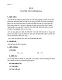 Giáo án Địa lý 9 bài 24: Vùng Bắc Trung Bộ (tt)