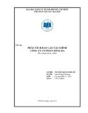 Tiểu luận: Phân tích báo cáo tài chính công ty cổ phần Sông Ba (mã chứng khoán : SBA)