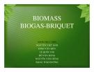 Tiểu luận: Năng lượng sinh khối Biomass biogas - Briquet